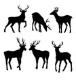 large collection of deer silhouettes vector image vector image