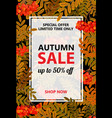 seasonal autumn sale vertical banner vector image vector image