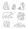 brown bears in contours vector image vector image