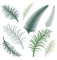 different versions of palm branches image vector image