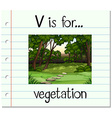 Flashcard letter V is for vegetation vector image vector image