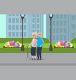 grandparents couple full length avatar over city vector image