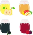 Jam jars pear apple currants raspberries vector image vector image