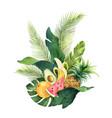 watercolor composition green tropical vector image vector image