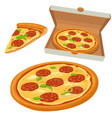 whole pizza and slices pizza pepperoni in open vector image