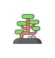 bonsai icon vector image