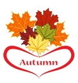 Autumn leaves of different colors vector image