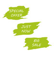 big sale green background design for headline vector image