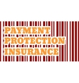 Buyer protection Internet payments security vector image vector image
