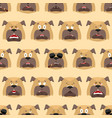 dog head pattern pet background ornament face vector image
