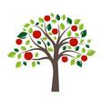flat color single apple tree vector image