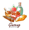 ginseng root hand drawn vector image
