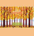 hello autumn autumn alley path in the park vector image vector image