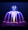 lit night fountain realistic vector image vector image