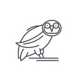 owl line icon concept owl linear vector image