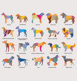 set of colorful mosaic dogs silhouettes-3 vector image vector image