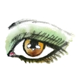 Watercolor hand drawn eye Make up vector image vector image