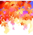 Autumn Watercolor Fall Leaves vector image vector image