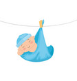cute little baby boy hanging in diaper vector image vector image