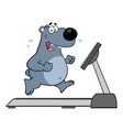 gray bear character running on a treadmill vector image vector image