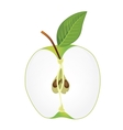half green apple vector image