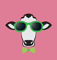 images of a cow wearing glasses vector image