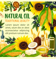 natural vegetable grains seeds and nuts oil vector image