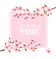 nature spring background with cherry blossoms vector image vector image