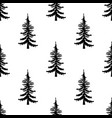 pine tree pattern simple of pine vector image vector image