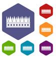 regal crown icons set hexagon vector image vector image