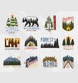 camp logo mountains coniferous forest and wooden vector image vector image