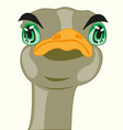 cartoon of the head of the ostrich vector image