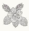 hibiscus flower and leaves vector image vector image