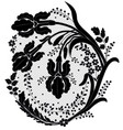 lace flower decor vector image vector image