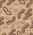 Seamless pattern with peanuts vector image vector image