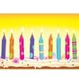 set burning candles on cake vector image