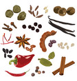 spices on a white background vector image