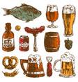 beer food hand drawn sketch set mug bottle vector image