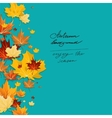 Autumn leaves design on green background vector image vector image