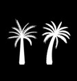 beautiful black and white palm tree leaf vector image