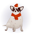 chihuahua in a new year s cap vector image vector image