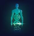 chromosomeman vector image
