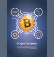 crypto currency bitcoin payment icon digital web vector image vector image