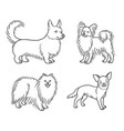 dogs different breeds in outlines set6 vector image