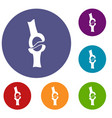 knee joint icons set vector image vector image