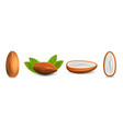 Almond icon set realistic style