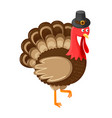 bird symbolic animal of thanksgiving day vector image vector image