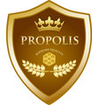 propolis gold icon vector image vector image
