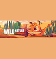 wild nature cartoon web banner tiger cub hunting vector image vector image