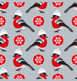 winter seamless pattern include bullfinch vector image